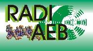 RADI-AEB: Red Andaluza de Investigación en Algoritmos Evolutivos y Bioinspirados